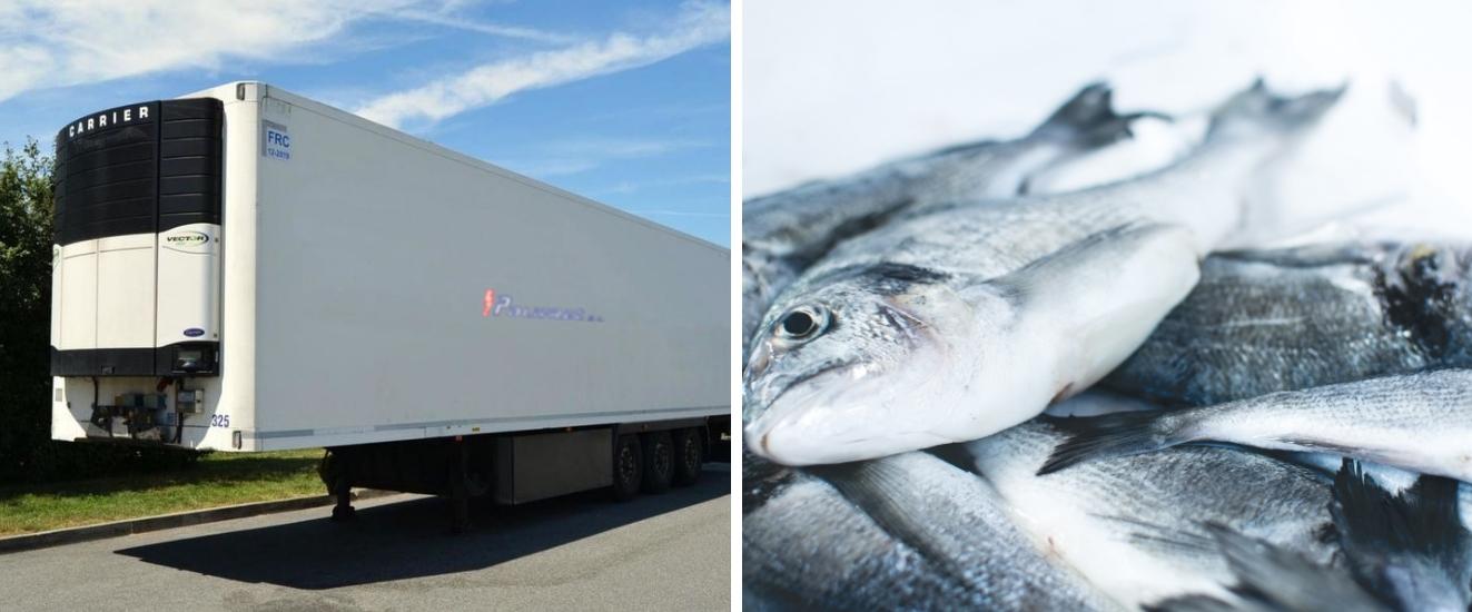 cámara frigorífica para camiones